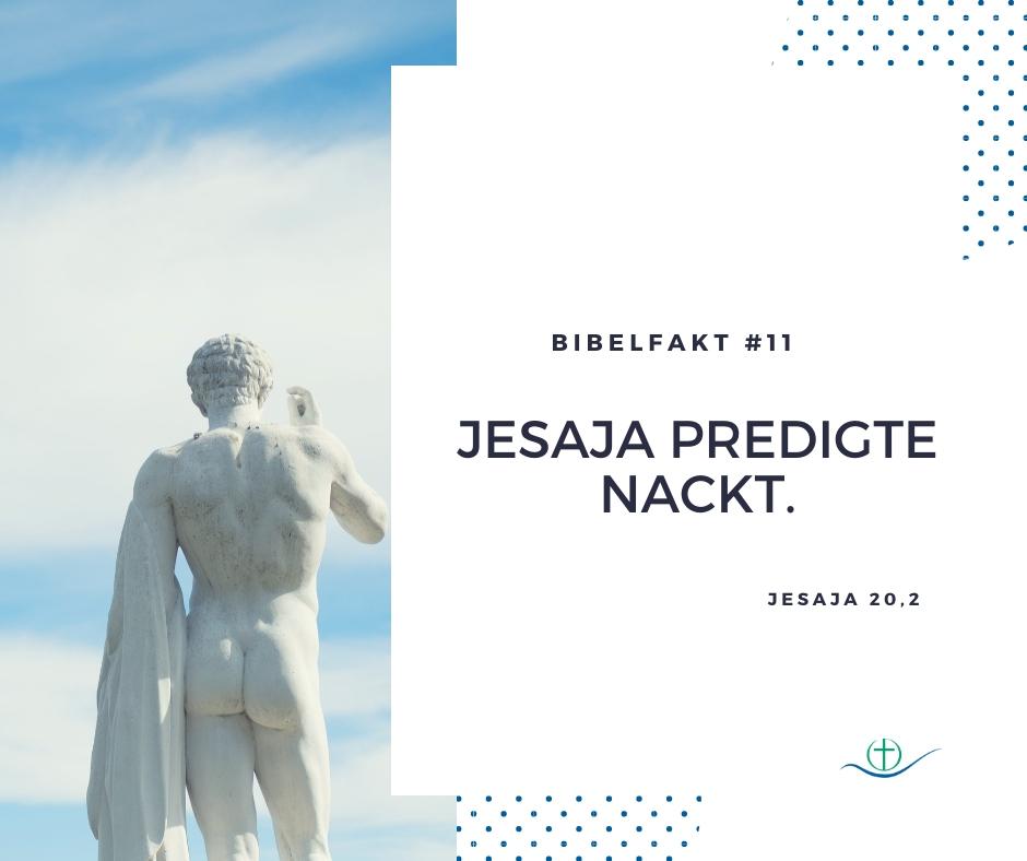 bibelfakt (1)
