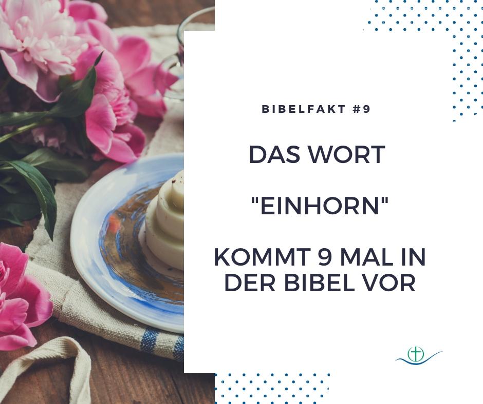 bibelfakt (11)