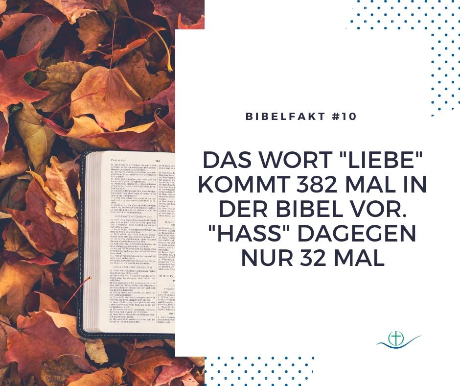 bibelfakt (12)