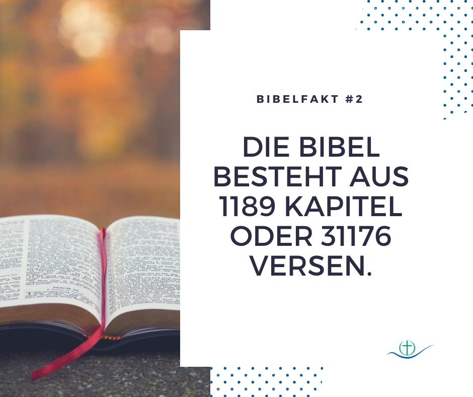 bibelfakt (4)