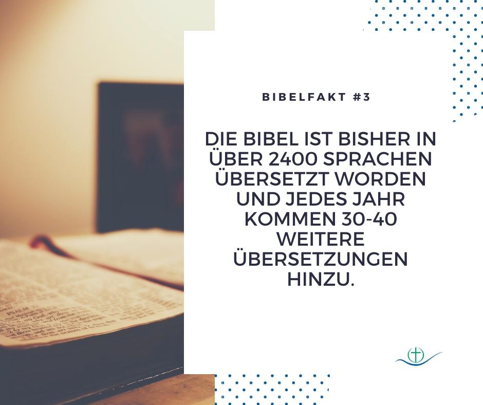 bibelfakt (5)