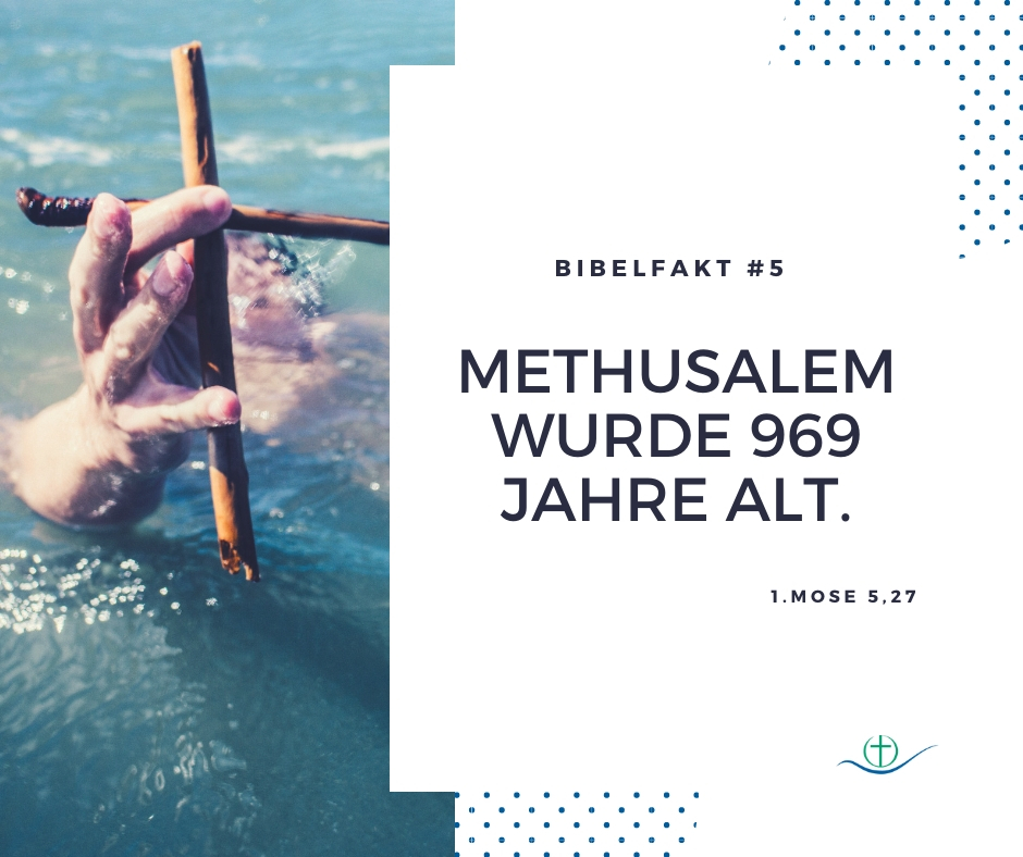 bibelfakt (7)