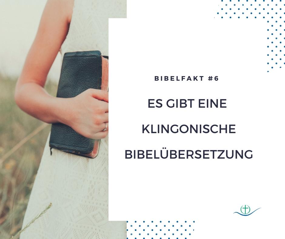 bibelfakt (8)